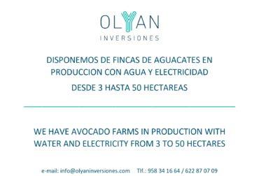 Disponemos de ficas de frutales en produccion y para transformar.